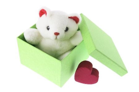 Teddy Bear in Gift Box on White Background photo