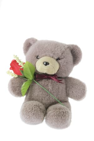 Teddy Bear with Red Rose on White Background Stock Photo - 3532980