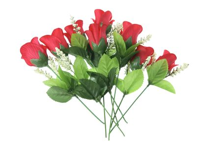 Res Roses on White Background Stock Photo - 3534760