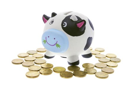 cash cow: Cow Saving Bank on White Background Stock Photo