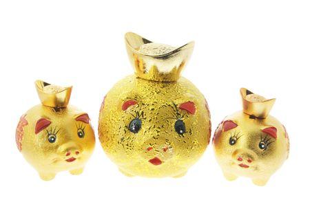 Chinese Gold Piggybanks on White Background photo
