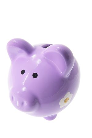 Piggy Bank on Isolated White Background