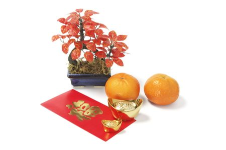 Chinese New Year Lucky Symbols on White Background photo