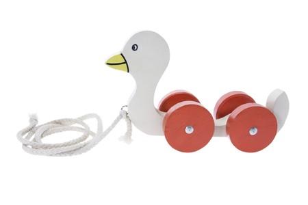pull toy: A lo largo de madera por tracci�n de pato de juguete en el fondo blanco
