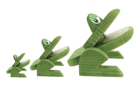 Wooden Frogs on Isolated White Background photo