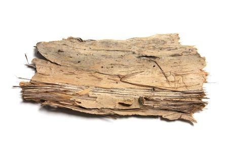 Piece of Tree Bark on White Background