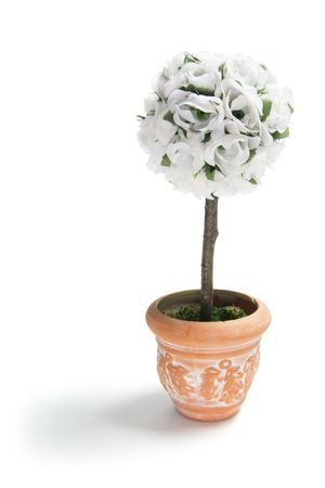 Artificial Pot Plant on Isolated White Background photo