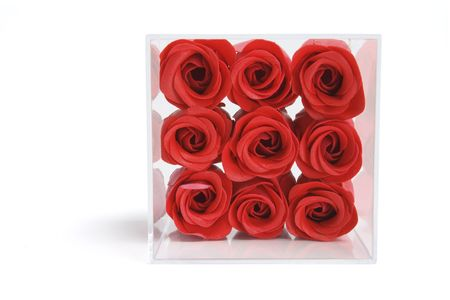 Artificial Red Roses in Plastic Box on White Background photo
