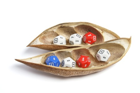 Dice in Dry Pods on White Background Stock Photo - 7426003