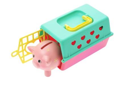 Piggybank in Plastic Box on White Background photo