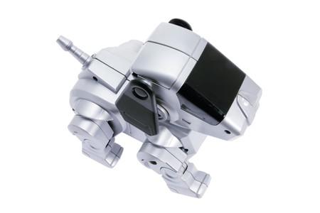 Toy Robot Dog on Isolated White Background Stock Photo - 7826262