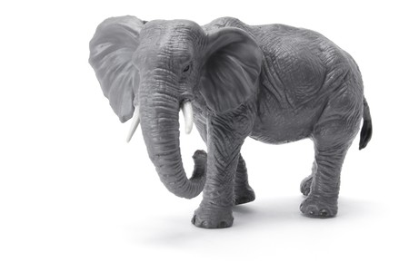Miniature Elephant on White Background photo