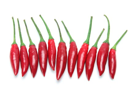 Red Chillies on White Background photo