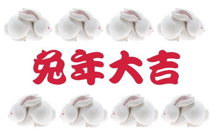Year of Rabbit on White Background Stock Photo - 8297429