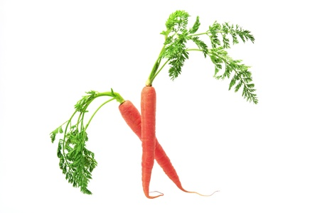 zanahorias: Zanahorias en fondo blanco