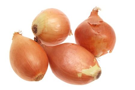 cebollas: Cebollas sobre fondo blanco aislado