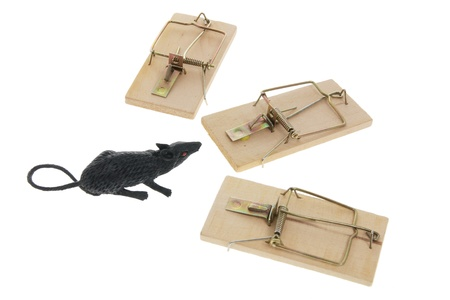 exterminate: Toy Rat and Mousetraps on White Background Stock Photo