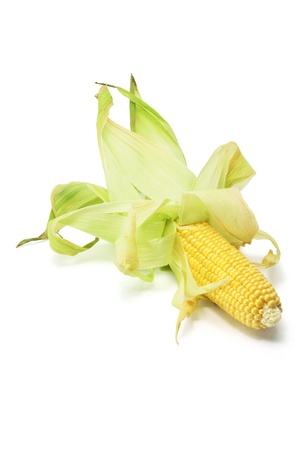 Corn Cobs on White Background photo