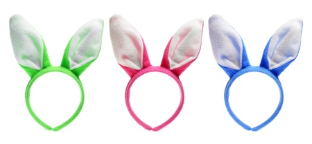 easter holiday: Easter Bunny Ears on White Background