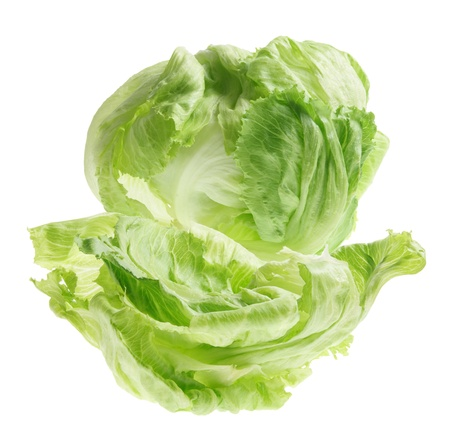 Iceberg Lettuce on White Background Stock Photo - 9582709