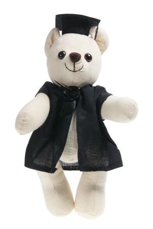 Graduation Teddy Bear on White Background  photo
