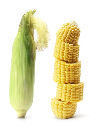 Corn Cob on White Background photo