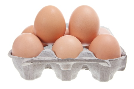 Eggs on Carton with White Background  photo