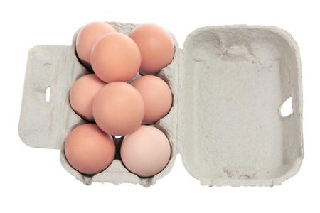 Eggs on Carton with White Background  photo