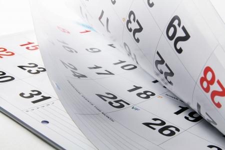 organise: Cerca de las p�ginas del calendario