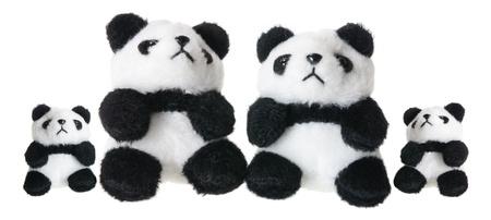 offsprings: Panda Soft Toys on White Background Stock Photo