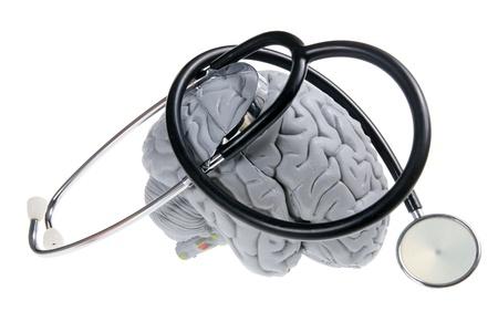 cerebro humano: Cerebro y estetoscopio sobre fondo blanco