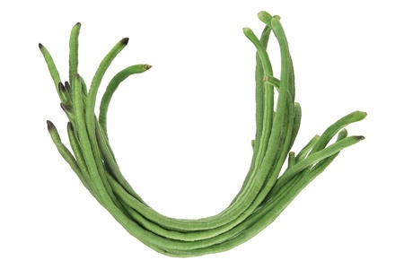 Snake Bean on White Background Stock Photo - 11266052