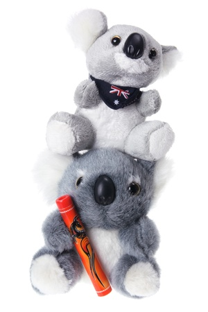 Koala Soft Toy on White Background photo