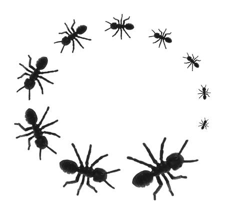 Toy Ants in Kreis auf weißem Hintergrund