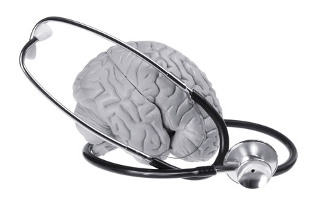 Brain Specimen and Stethoscope on White Background photo