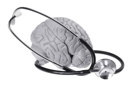 Brain Specimen and Stethoscope on White Background photo