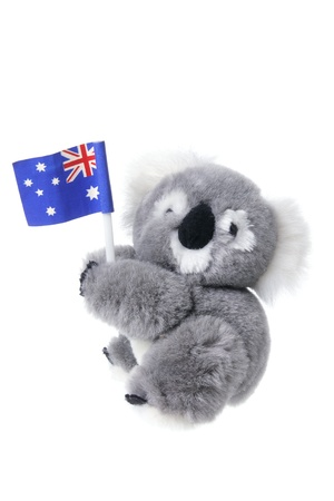 soft toy: Soft Toy Koala on White Background
