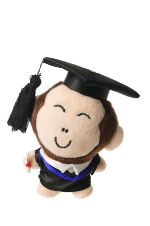 soft toy: Soft Toy Graduation Monkey on White Background  Stock Photo