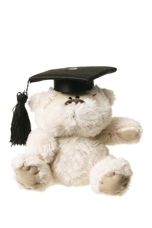 soft toy: Soft Toy Graduation Bear on White Background