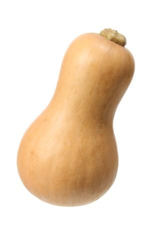 Butternut Pumpkin on White Background