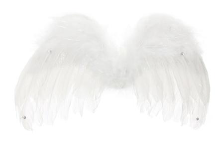 흰색 배경에 천사 날개