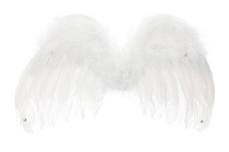 heavenly angel: Angel Wings on White Background Stock Photo