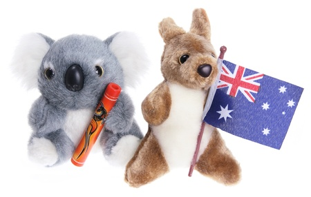 Soft Toy Koala on White Background photo