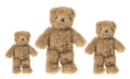 osos de peluche: Osos de peluche sobre fondo blanco