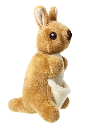 soft toy: Kangaroo Soft Toy on White Background