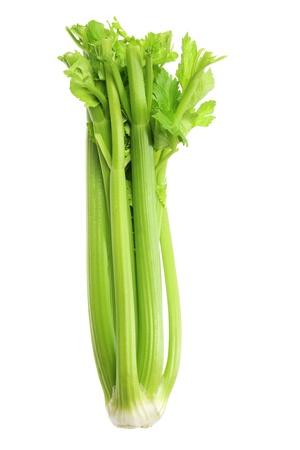 Celery on White Background photo