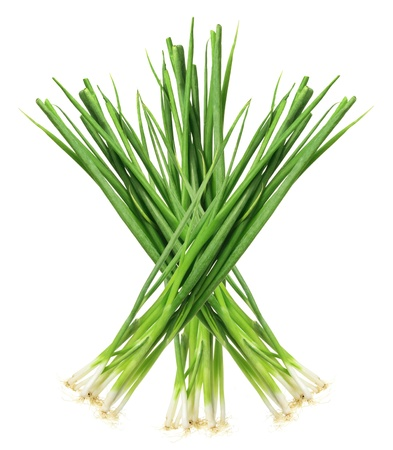 bunches: Spring Onions on White Background
