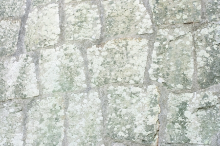 plaster mould: Close Up of Stone Wall Background