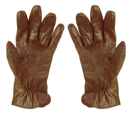leather glove: Lady Gloves on White Background Stock Photo