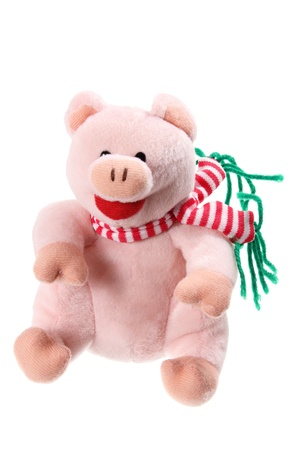 soft toy: Piggy Soft Toy on White Background